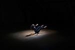 TRANSFORME ECRIRE SESSION 4/4..Levante..Chorégraphie et interprétation : Lorena Dozio..Musique: Carlo Ciceri ..Collaboration musicale : Daniel Zea..Voix: Marine Beelen..directrice artistique et pédagogique du PRCC : Myriam Gourfink ..Compositeur référent : Daniel Zea..Chorégraphes : Amandine Bajou, Mathieu Bajolet, Brenda Clark, Lorena Dozio, Aurélie Gandit, Florent Otello, Luna Paese, Mélanie Perrier, Sylvain Riejou..Compositeurs : Silvia Borzelli, Carlo Ciceri, Marc Garcia Vittoria..Chanteuses : Marine Beelen, Sarah Laulan, Marie Picault..Lieu :  Fondation Royaumont..Cadre : Fenêtre sur cour(s)..Ville :  Asnières sur Oise..Le : 24/02/2012..© Laurent PAILLIER / photosdedanse.com..All Rights reserved