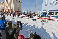 2009 North American Open sled dog race start in downtown Fairbanks, Alaska.