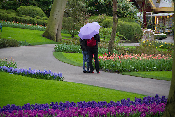 Netherlands, Keukenhof Gardens.  <br /> Match your photographic vision to the day's lighting conditions. These overcast skies let the camera capture detail in every part of this image. On a bright sunny day, this scene would be randomly filled with harsh shadows, that have no detail and little color. <br /> Keukenhof Gardens, Lisse, Netherlands.