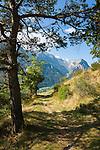Switzerland, Canton Valais, near Bratsch: hiking trail on the northern slope of Rhône-Valley | Schweiz, Kanton Wallis, bei Bratsch: Wanderweg am Nordhang des Rhonetals