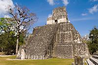 Tower 2 at the famous Mayan Ruins in the Gran Plaza showing the civilization of historical Maya Indians at remote village of Tikal Guatemal