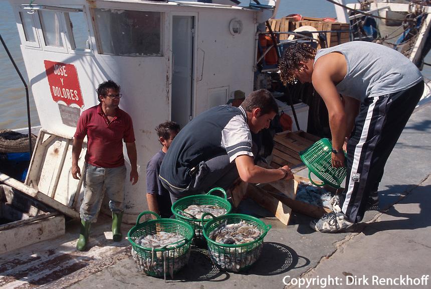 Spanien, Andalusien, Fischer in Bonanza