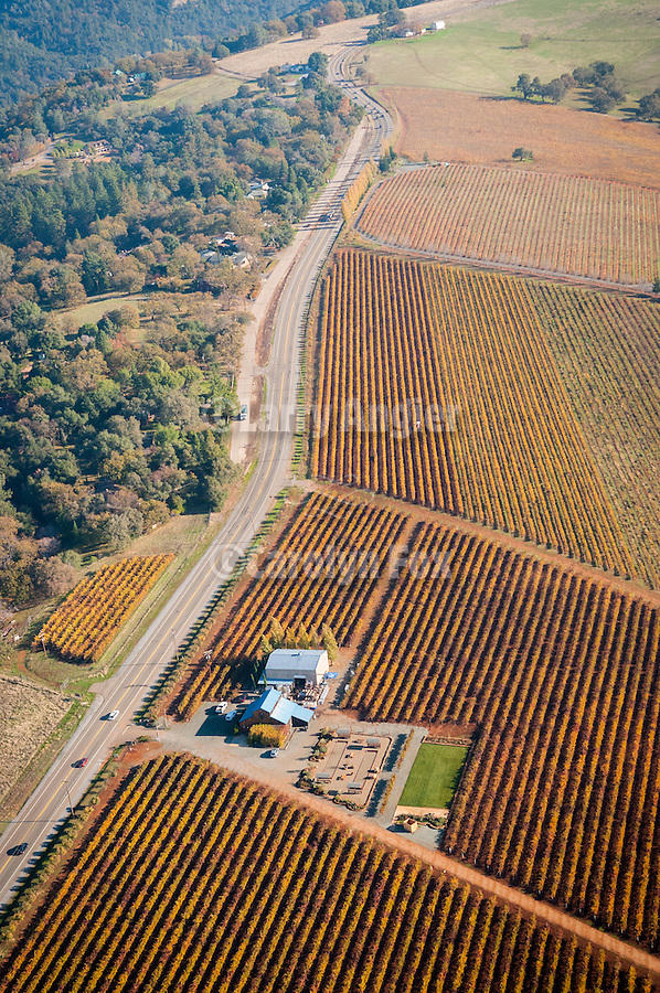 Sutter Ridge vineyards from the air in autumn