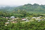 Houses and disturbed secondary lowland rainforest, Kinabatangan River, Sabah, Borneo, Malaysia