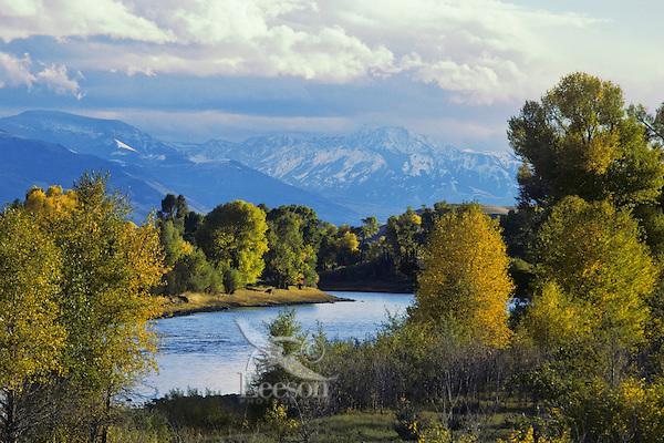 Yellowstone River, Paradise Valley, Montana. September.