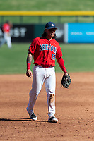 Arizona Wildcats third baseman Nick Quintana (13) during an NCAA exhibition game against Cal State Fullerton at Sloan Park on October 28, 2018 in Mesa, Arizona. (Zachary Lucy/Four Seam Images)