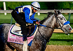 April 27, 2021: Crazy Beautiful, trained by trainer Kenneth McPeek, exercises in preparation for the Kentucky Oaks at Churchill Downs on April 27, 2021 in Louisville, Kentucky. John Voorhees/Eclipse Sportswire/CSM
