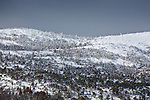 Fresh snow on Cadillac Mountain in Acadia National Park, Downeast, ME, USA