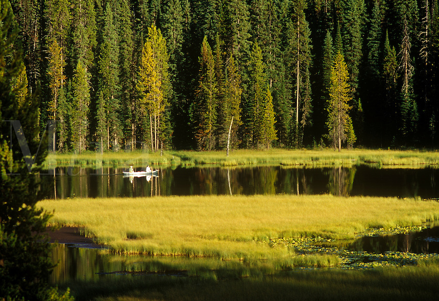 Two men fishing from canoe on marshy lake in the forests of the Kootenay Mountains, eastern British Columbia, Canada