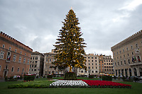 09.12.2020 - Spelacchio Is Back - The Christmas Tree Of Rome