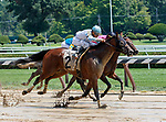Picture Day (no. 2) wins Race 3 July 26 at Saratoga Race Course, Saratoga Springs, NY.    Ridden by Junior Alvarado and trained by Linda Rice, Picture Day finished ¾ lengths in front of Black Canary (no. 7) in the 5 ½ furlong race.  (Bruce Dudek/Eclipse Sportswire)