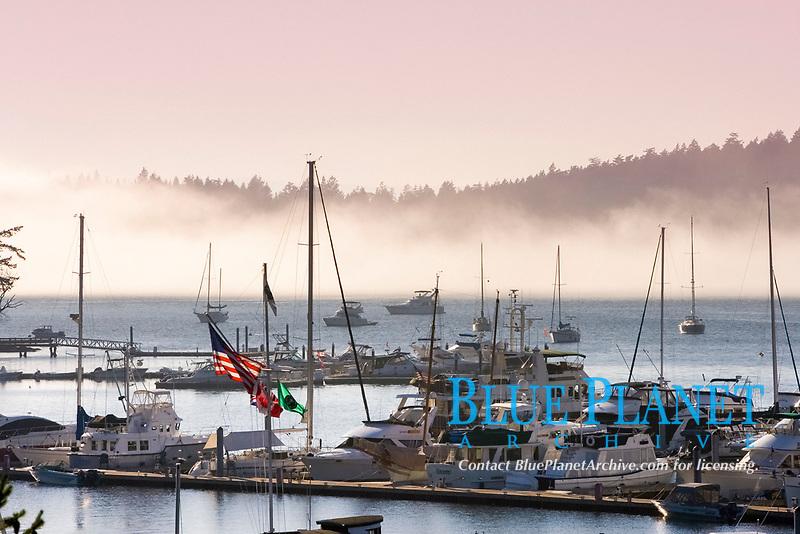 Roche Harbor, San Juan Islands, Washington with morning fog