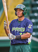 16 June 2014: Vermont Lake Monsters catcher Andy Paz awaits his turn in the batting cage prior to a game against the Connecticut Tigers at Centennial Field in Burlington, Vermont. The Lake Monsters fell to the Tigers 3-2 in NY Penn League action. Mandatory Credit: Ed Wolfstein Photo *** RAW Image File Available ****
