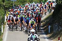 12th September 2021: Trento, Trentino–Alto Adige, Italy: UEC Road European Mens Elite Cycling Championships; Tadej POGACAR (SLO) leads the pack