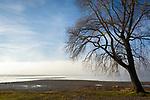 Deutschland, Bayern, Chiemgau, bei Chieming: Herbststimmung am Chiemsee | Germany, Bavaria, Chiemgau, near Chieming: autumn scenery at lake Chiemsee