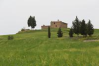 Tuscany - landscape
