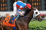 23 May 2009 : Calvin Borel and BRASS HAT  win the G3 Louisville Handicap at Churchill Downs in Louisville, Kentucky.