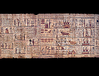 Ancient Egyptian Book of the Dead papyrus - Ptolemaic Period (722-30BC).Turin Egyptian Museum.  Black background