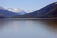 Mountains,lake and bald eagle