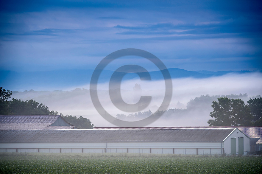 16/06/19 - CHATILLON LA PALUD - AIN - FRANCE - Illustration. La Plaine de l Ain vue de Chatillon la Palud - Photo Jerome CHABANNE