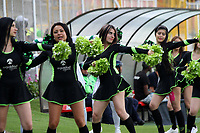 BOGOTA - COLOMBIA - 15 - 07 - 2017:Porristas de La Equidad. La Equidad y Deportivo Pasto,  durante partido por la fecha 2 de la Liga Aguila II-2017, jugado en el estadio Metropolitano de Techo de la ciudad de Bogota. / Cheerleaders of La Equidad. La Equidad and Deportivo Pasto,  during a match for the  date 2 of the Liga Aguila II-2017 at the Metropolitano de Techo Stadium in Bogota city, Photos: VizzorImage  /Felipe Caicedo / Staff.