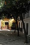 A doorway under orange trees in Seville, Spain.