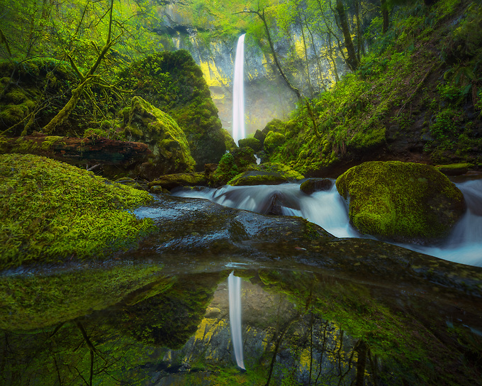 Majestic Elowah falls reflected in a small pool of water in early spring.<br /> <br /> ARTIST CHOICE: 24x36 Lumachrome/Acylic