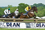 5 May 2012: Incomplete and Joey Elliot win the Virginia Gold Cup at Great Meadow in The Plains, Va. Guts for Garters and Darren Nagle came in third. Incomplete is owned by Robert Kinsley and trained  by Ann Stewart.  (Susan M. Carter/Eclipse Sportswire)