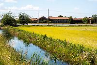 Risaie e una cascina nell'Abbiatense presso Gaggiano nel Parco agricolo Sud Milano --- Rice fields and a farmhouse near Gaggiano in the Rural Park South Milan