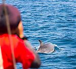 Cabo Verde, Kaap Verdie, KaapVerdie, sal kaapverdie santa maria 2017<br /> Santa Maria, officieel  is een plaats in het zuiden van het Kaapverdische eiland Sal met 6.272 inwoners. Met de opkomst van het toerisme heeft de plaats bekendheid gekregen en is het toerisme de voornaamse inkomstenbron<br /> Kaapverdië, dat behoort tot de geografische regio Ilhas de Barlavento<br />   foto  Michael Kooren<br /> strand Santa Maria  beach boats swimming, clear water, sunshine, reflections , fun, sun ,  whale spotting, dolphin spotting, catamaran.