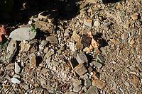 schist soil vineyard quinta do seixo sandeman douro portugal