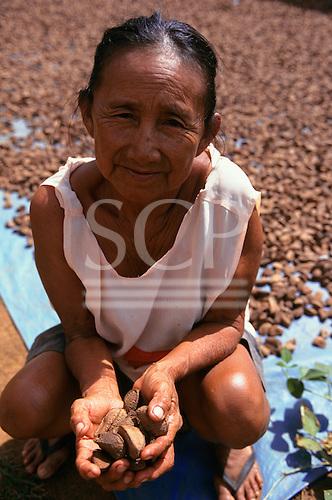 Altamira, Amazon, Brazil. Amazoncoop brazil nut oil factory; Dona Xipaya with Brazil nuts.