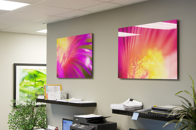 Commissioned photographs for an attorney's office in Riverside, California. Prints face-mounted onto acrylic.