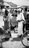 03.12.2003 Konark (Orissa)<br /> <br /> Two sadhus are speaking each other in the middle of the crowd.<br /> <br /> Deux sadhus en train de se parler au milieu de la foule.