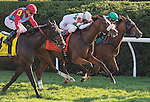 LEXINGTON, KY - OCT 15: Time and Motion, #7, ridden by John Velasquez and trained by James Toner wins the win the 33rd running of The Queen Elizabeth II (Grade 1) Presented by Lane's End $500,000 at Keeneland Racetrack in Lexington, KY. (Photo by Samantha Bussanich/Eclipse Sportswire/Getty Images)