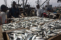 Buying fish, Tema, Ghana..Photograph by Peter E. Randall