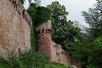 Henneburg in Stadtprozelten, Unterfranken, Bayern, Deutschland
