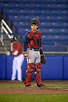 Potomac Nationals catcher Tres Barrera (33) during the second game of a doubleheader against the Salem Red Sox on June 11, 2018 at Haley Toyota Field in Salem, Virginia.  Potomac defeated Salem 4-0.  (Mike Janes/Four Seam Images)