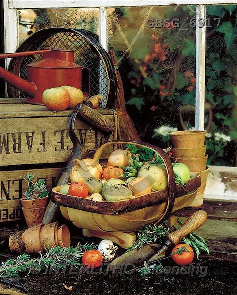 Ron, MASCULIN, photos, fruit, basket(GBSG6917,#M#) Männer, masculino, hombres