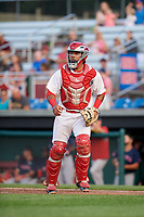 Auburn Doubledays catcher Adalberto Carrillo (8) during a game against the Lowell Spinners on July 13, 2018 at Falcon Park in Auburn, New York.  Lowell defeated Auburn 8-5.  (Mike Janes/Four Seam Images)