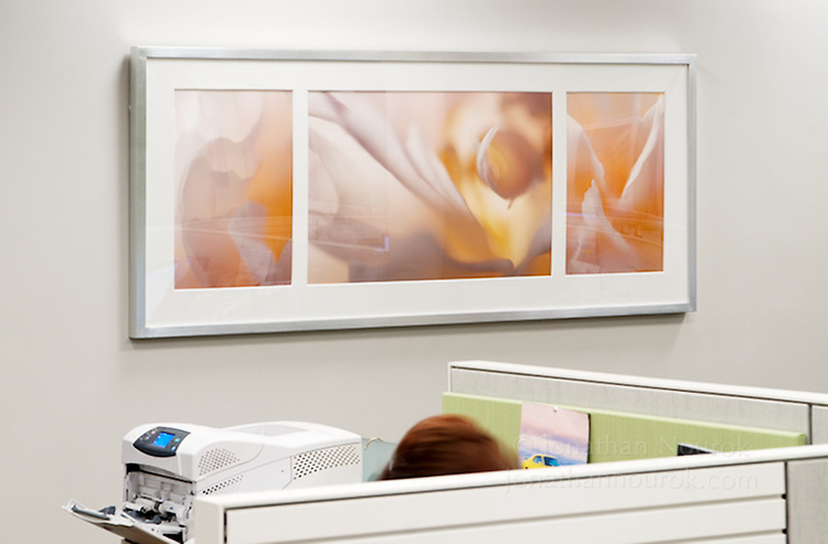 Framed Fuji Supergloss triptych at a financial institution in Los Angeles, California.