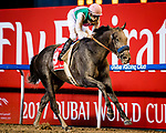 DUBAI, UNITED ARAB EMIRATES - MARCH 25: Arrogate #9 ridden by Mike Smith (red hat), wins the Dubai World Cup at Meydan Racecourse during Dubai World Cup Day on March 25, 2017 in Dubai, United Arab Emirates. (Photo by Douglas DeFelice/Eclipse Sportswire/Getty Images)
