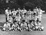 Bethel Park PA: Photo of the Bethel Park Little League All-Stars.  Members include; Jack Synder, Bobby Uhler, Gary Smith, Ron Thulin, Carl Long, Don Troup, Bill Mullen, David Page, Mike Stewart, Joe Fredley, and can't remember the others.
