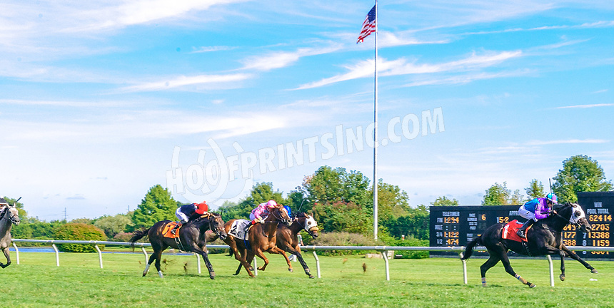 Dream About Me winning at Delaware Park on 10/2/21