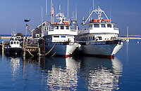 whale watching, boats, Plymouth, Massachusetts, MA, View of Captain John Whale Watching boats docked in Plymouth Harbor in Plymouth
