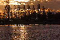 A four person team practices rowing on San Leandro Bay bathed in sunset light at the Martin Luther King Jr. Regional Shoreline in Oakland, California.