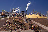 AJ4015, lumber, sawmill, papermill, Florida, Lumberyard at St. Joe Forest Products Company in Port Saint Joe in the state of Florida.