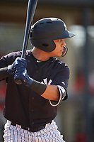 New York Yankees Eduardo Torrealba (9) on deck during a Florida Instructional League game against the Philadelphia Phillies on October 11, 2018 at Yankee Complex in Tampa, Florida.  (Mike Janes/Four Seam Images)