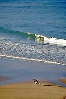 Stoller on beach at Cape Kiwanda. Oregon