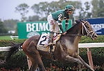 Greenpointcrusader (no. 2) ridden by Joe Bravo and trained by Dominic Schettino, wins the grade 1 Champagne for two year olds on October 3, 2015 at Belmont Park in Elmont (Sophie Shore/Eclipse Sportswire)
